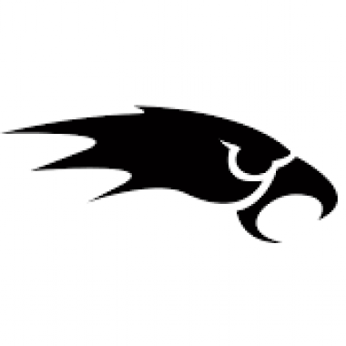 Merseyside Nighthawks