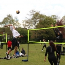 Park Volleyball and Mini League